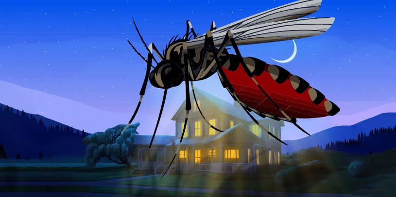 8 Natural ways to control Mosquito in Home