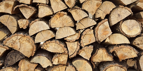 Pinon wood