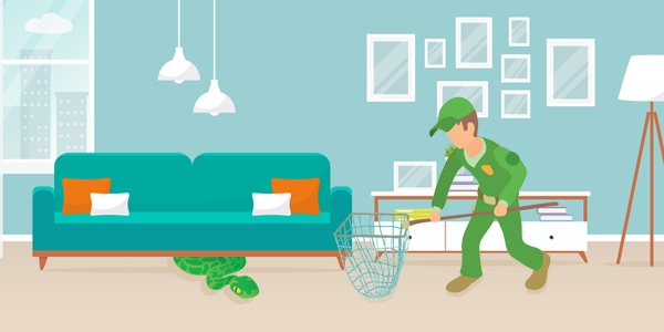 Snake Control Services in chennai